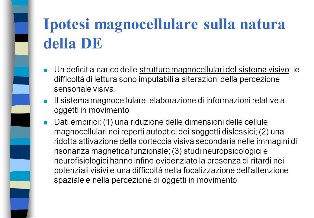 Ipotesi magnocellulare sulla natura della DE