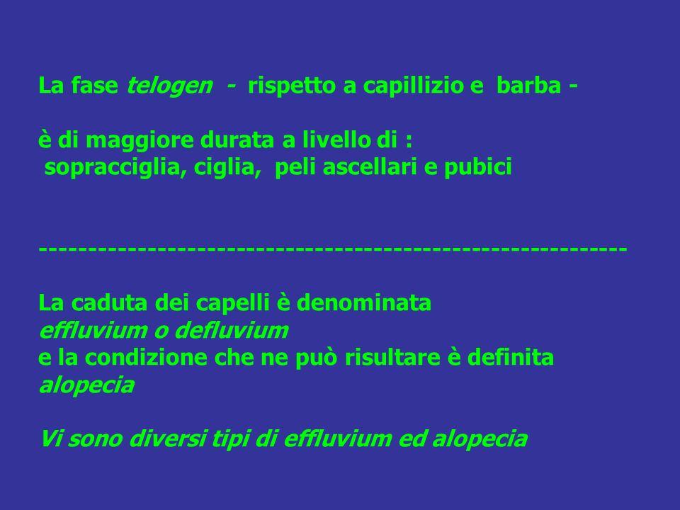 La fase telogen - rispetto a capillizio e barba - è di maggiore durata a livello di : sopracciglia, ciglia, peli ascellari e pubici ------------------------------------------------------------ La caduta dei capelli è denominata effluvium o defluvium e la condizione che ne può risultare è definita alopecia Vi sono diversi tipi di effluvium ed alopecia