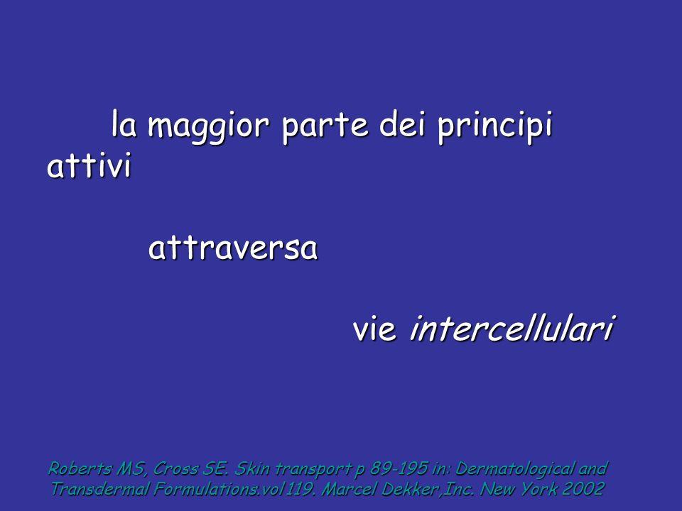 attraversa vie intercellulari la maggior parte dei principi attivi