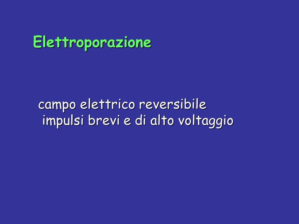 Elettroporazione campo elettrico reversibile impulsi brevi e di alto voltaggio
