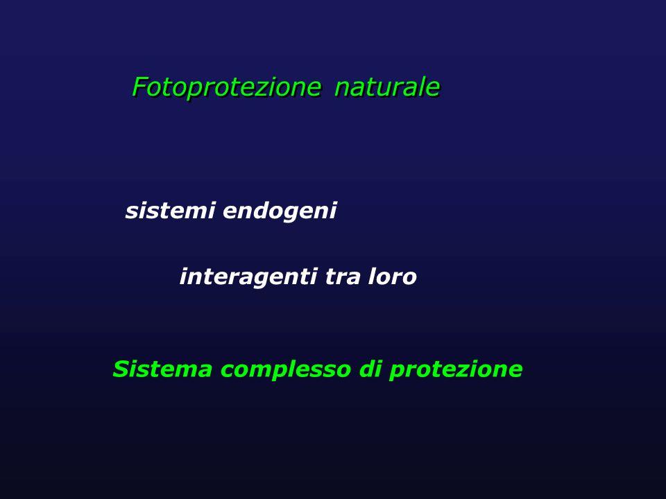 Sistema complesso di protezione