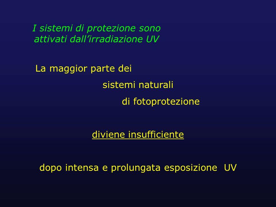 I sistemi di protezione sono attivati dall'irradiazione UV