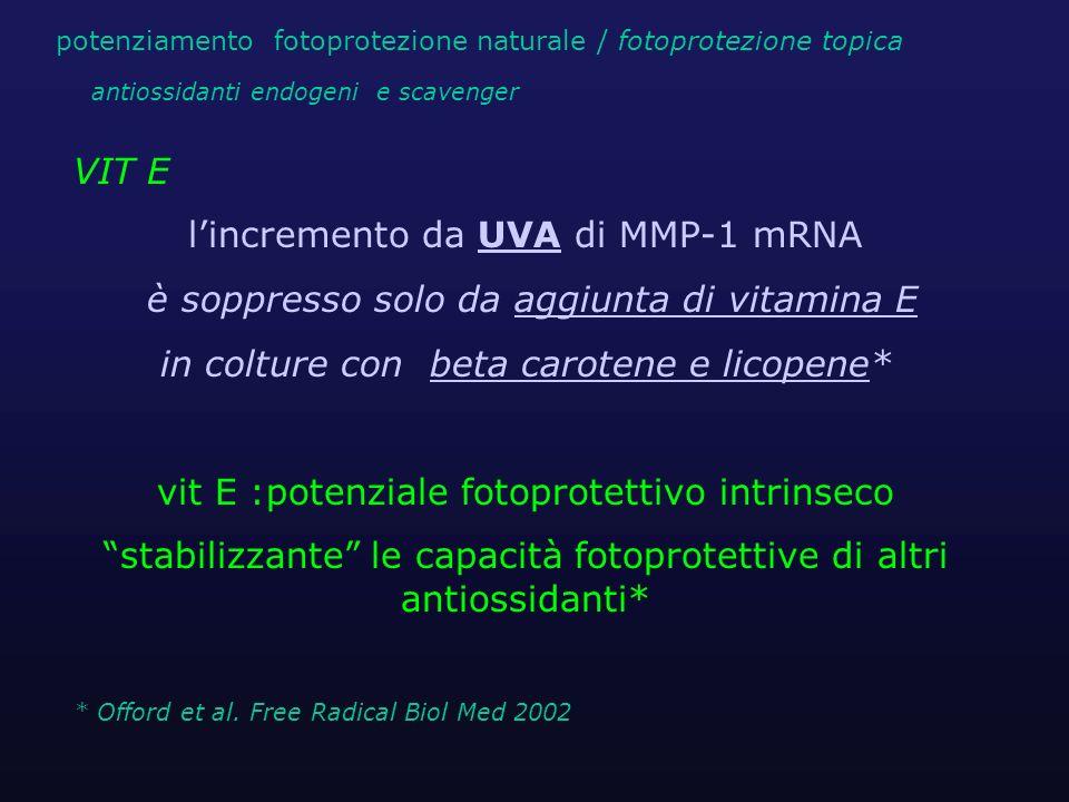 l'incremento da UVA di MMP-1 mRNA