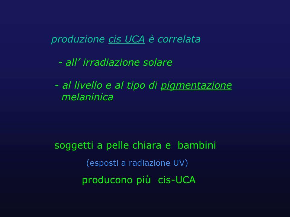 produzione cis UCA è correlata - all' irradiazione solare