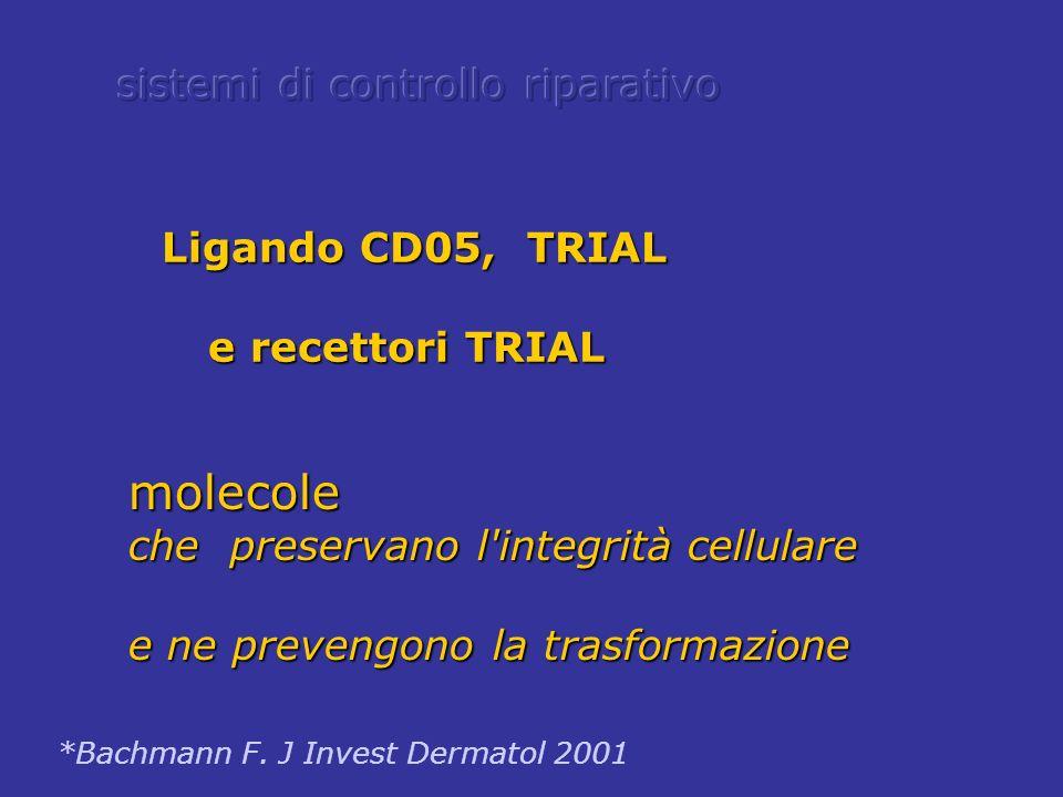 molecole sistemi di controllo riparativo e recettori TRIAL