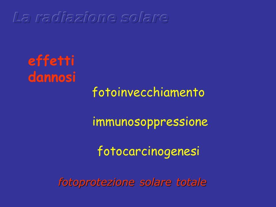 fotoinvecchiamento immunosoppressione fotocarcinogenesi