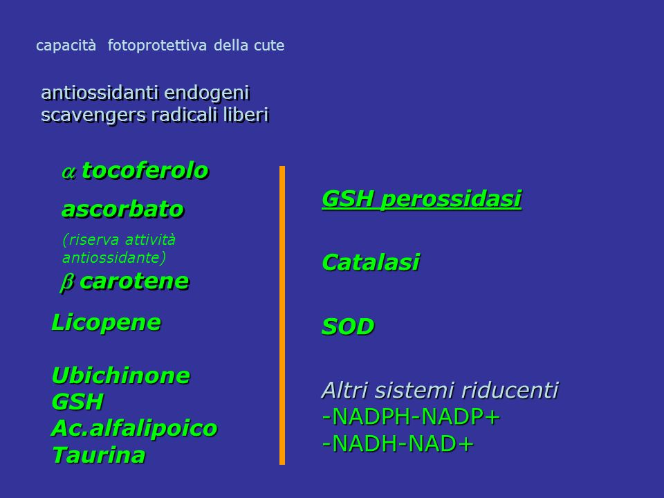  carotene  tocoferolo ascorbato GSH perossidasi Catalasi SOD