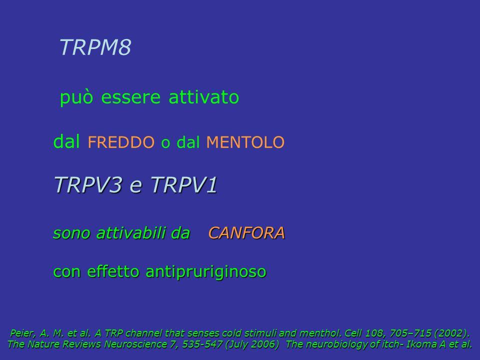 TRPV3 e TRPV1 può essere attivato dal FREDDO o dal MENTOLO TRPM8
