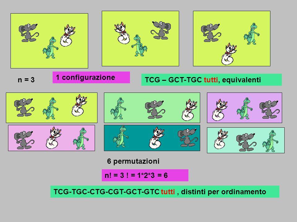 1 configurazione n = 3. TCG – GCT-TGC tutti, equivalenti. 6 permutazioni. n! = 3 ! = 1*2*3 = 6.