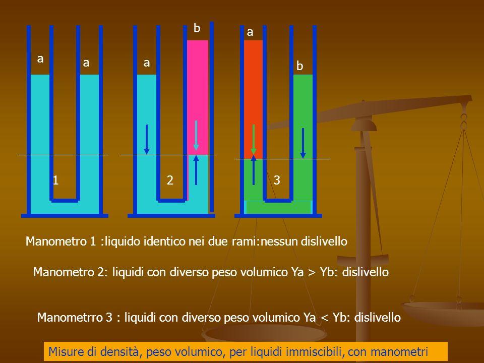 b a. a. a. a. b. 1. 2. 3. Manometro 1 :liquido identico nei due rami:nessun dislivello.
