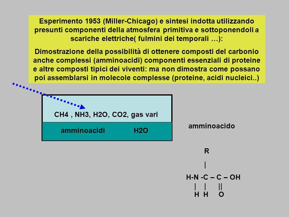 Esperimento 1953 (Miller-Chicago) e sintesi indotta utilizzando presunti componenti della atmosfera primitiva e sottoponendoli a scariche elettriche( fulmini dei temporali …):