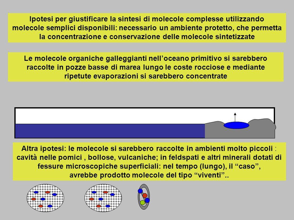 Ipotesi per giustificare la sintesi di molecole complesse utilizzando molecole semplici disponibili: necessario un ambiente protetto, che permetta la concentrazione e conservazione delle molecole sintetizzate