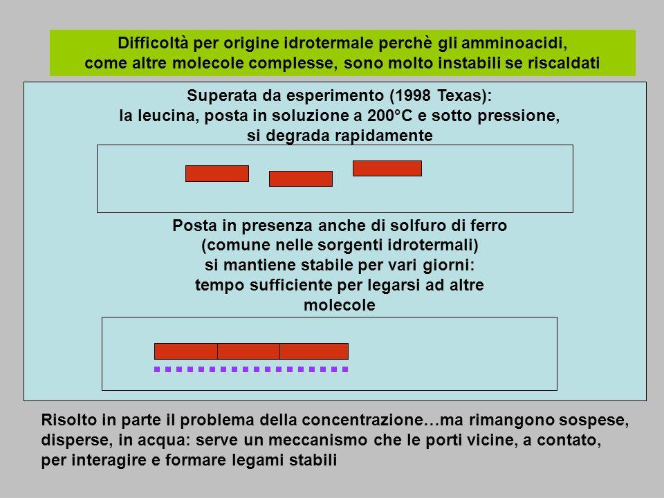 Difficoltà per origine idrotermale perchè gli amminoacidi, come altre molecole complesse, sono molto instabili se riscaldati