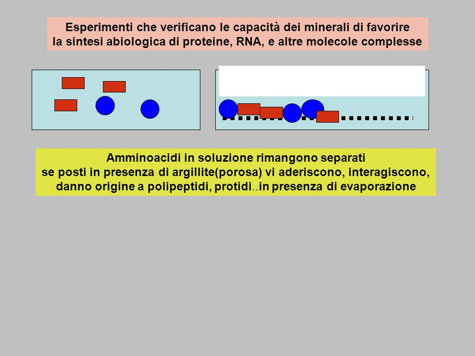 Esperimenti che verificano le capacità dei minerali di favorire la sintesi abiologica di proteine, RNA, e altre molecole complesse