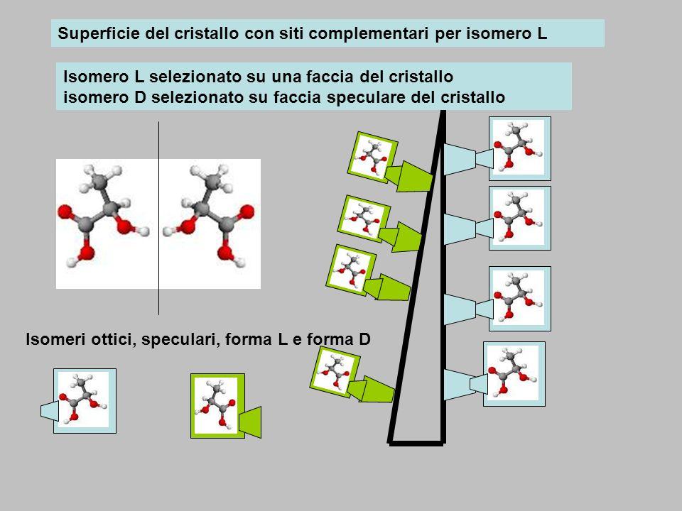 Superficie del cristallo con siti complementari per isomero L