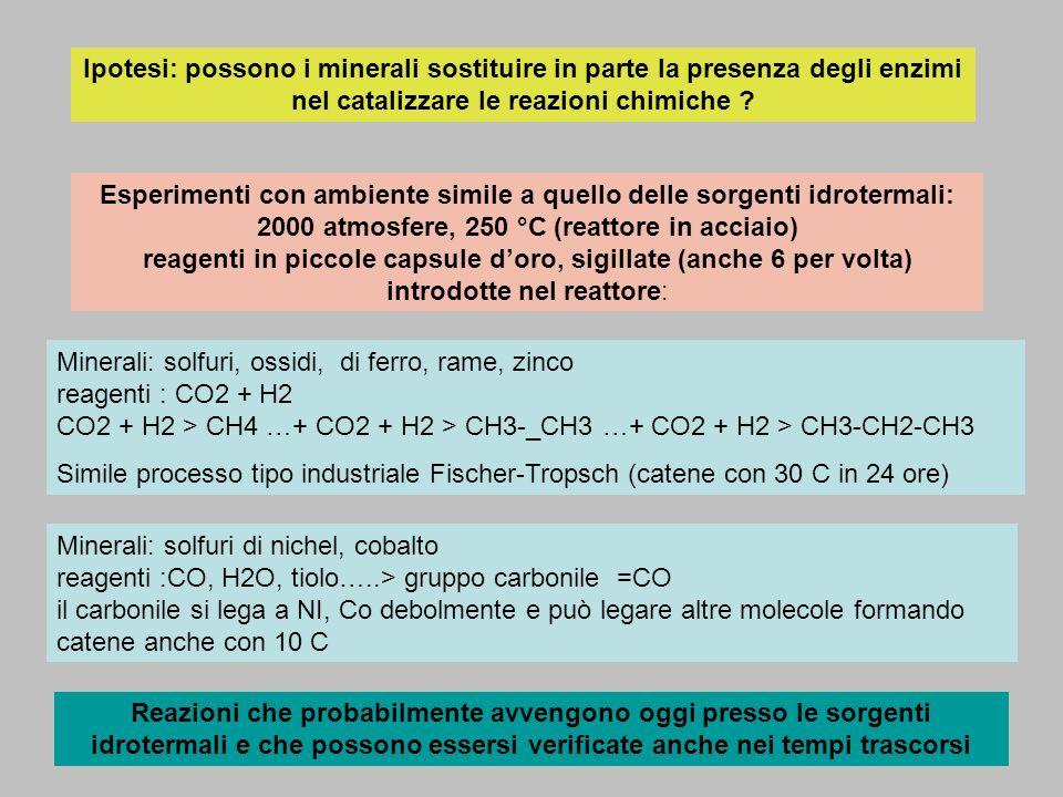 Ipotesi: possono i minerali sostituire in parte la presenza degli enzimi nel catalizzare le reazioni chimiche