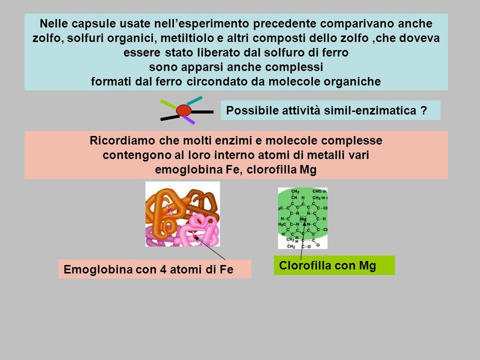 Nelle capsule usate nell'esperimento precedente comparivano anche zolfo, solfuri organici, metiltiolo e altri composti dello zolfo ,che doveva essere stato liberato dal solfuro di ferro sono apparsi anche complessi formati dal ferro circondato da molecole organiche