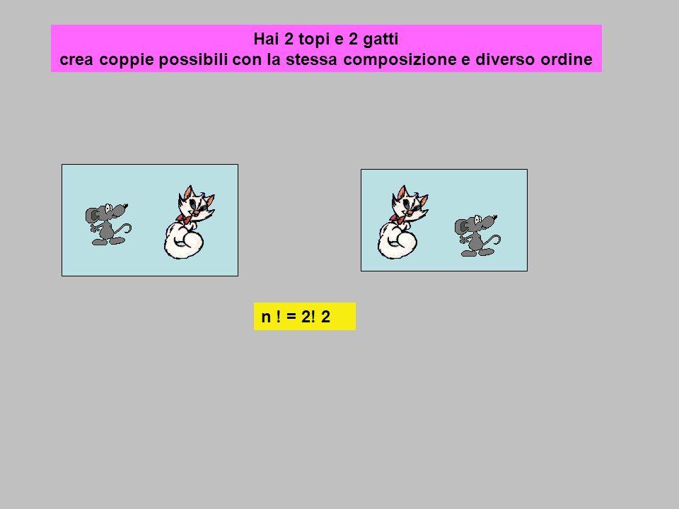 Hai 2 topi e 2 gatti crea coppie possibili con la stessa composizione e diverso ordine