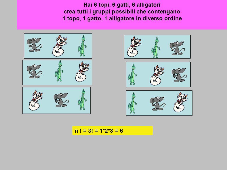 Hai 6 topi, 6 gatti, 6 alligatori crea tutti i gruppi possibili che contengano 1 topo, 1 gatto, 1 alligatore in diverso ordine