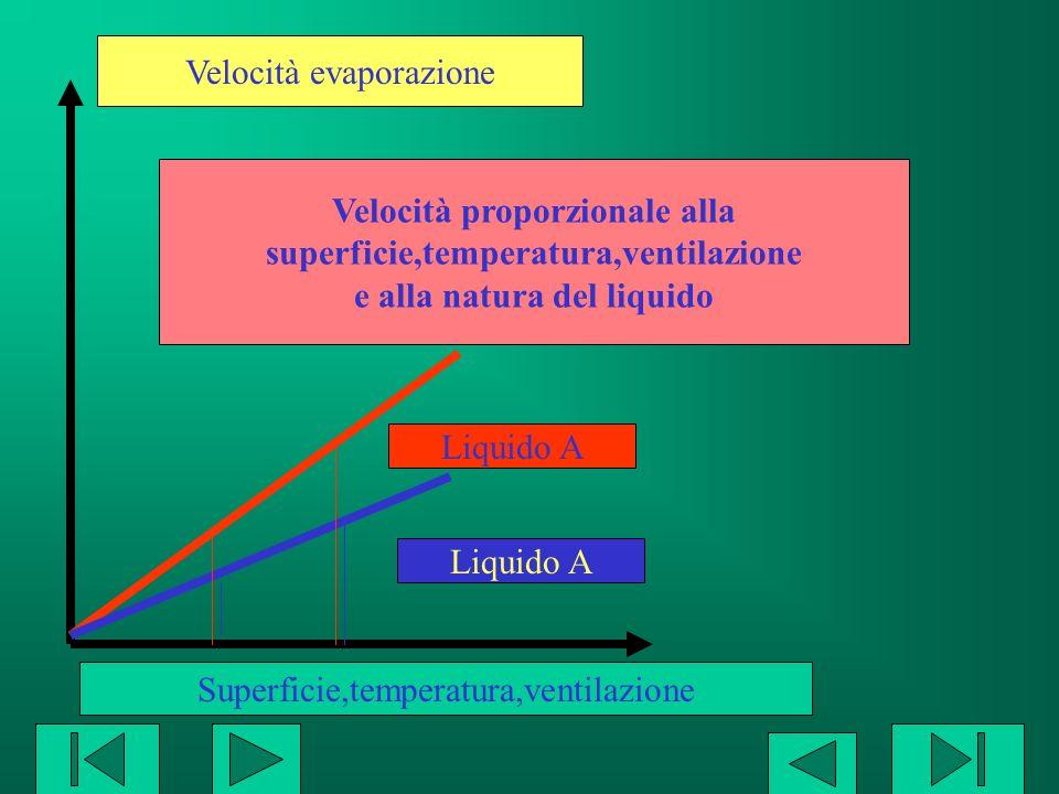 Velocità evaporazione