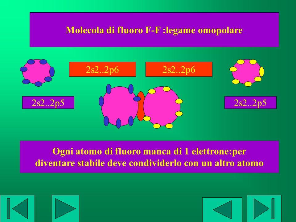Molecola di fluoro F-F :legame omopolare