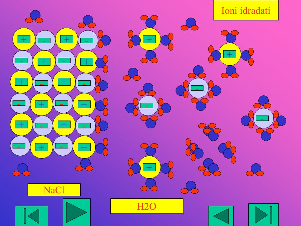 Ioni idradati + - + + - - - + NaCl H2O