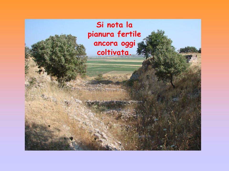 Si nota la pianura fertile ancora oggi coltivata.