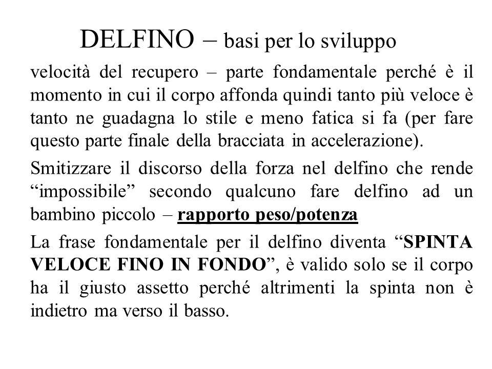 DELFINO – basi per lo sviluppo