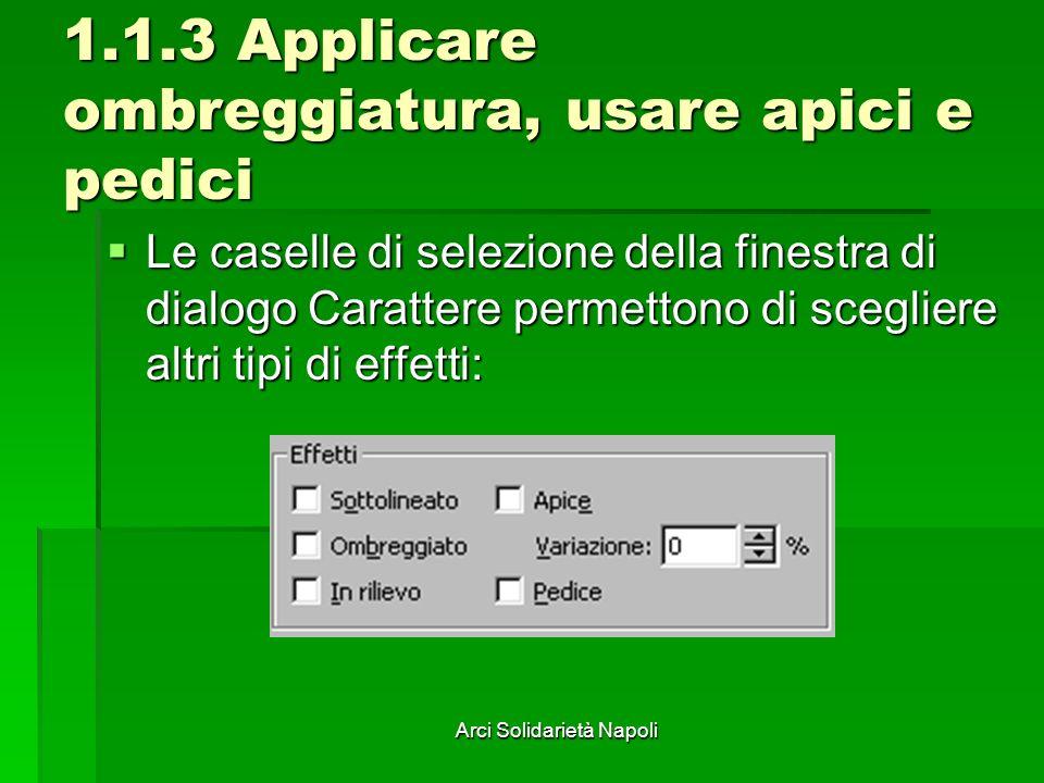 1.1.3 Applicare ombreggiatura, usare apici e pedici
