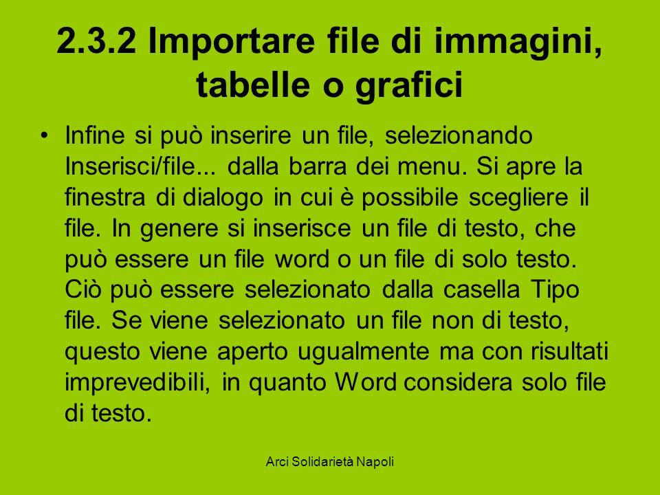 2.3.2 Importare file di immagini, tabelle o grafici