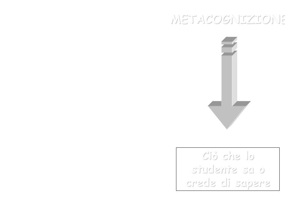 Ciò che lo studente sa o crede di sapere