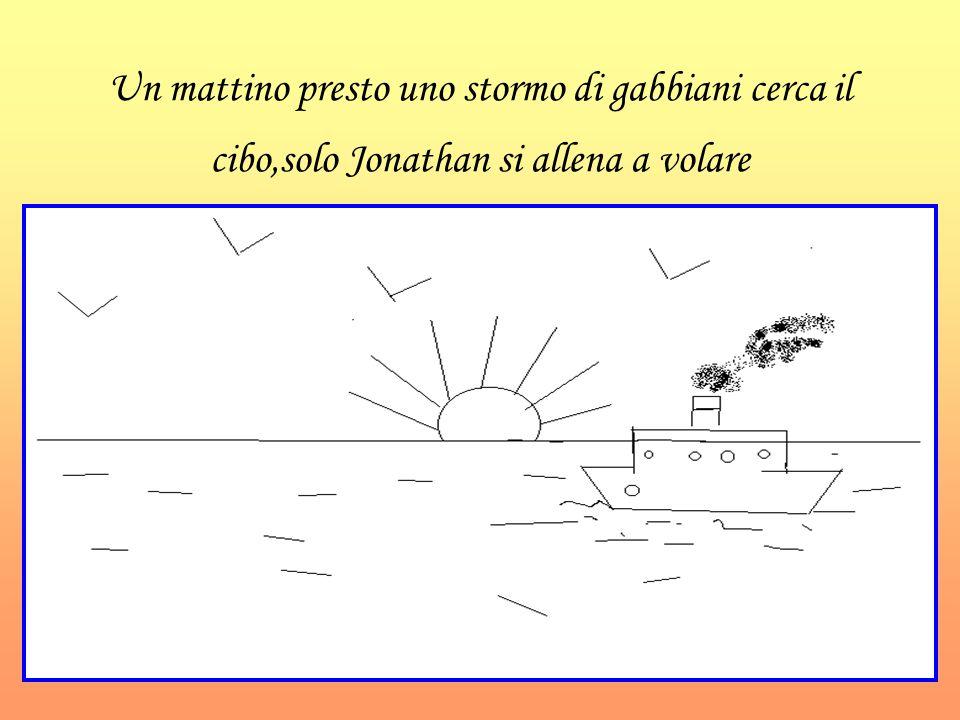 Un mattino presto uno stormo di gabbiani cerca il cibo,solo Jonathan si allena a volare