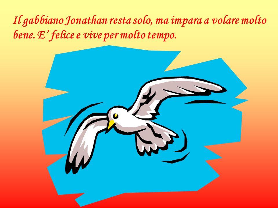 Il gabbiano Jonathan resta solo, ma impara a volare molto bene