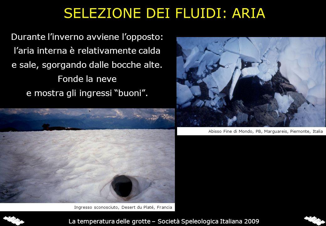 SELEZIONE DEI FLUIDI: ARIA