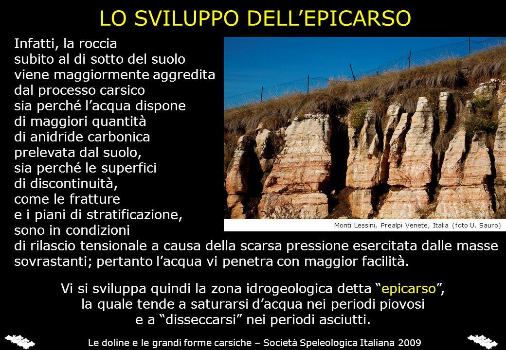 LO SVILUPPO DELL'EPICARSO