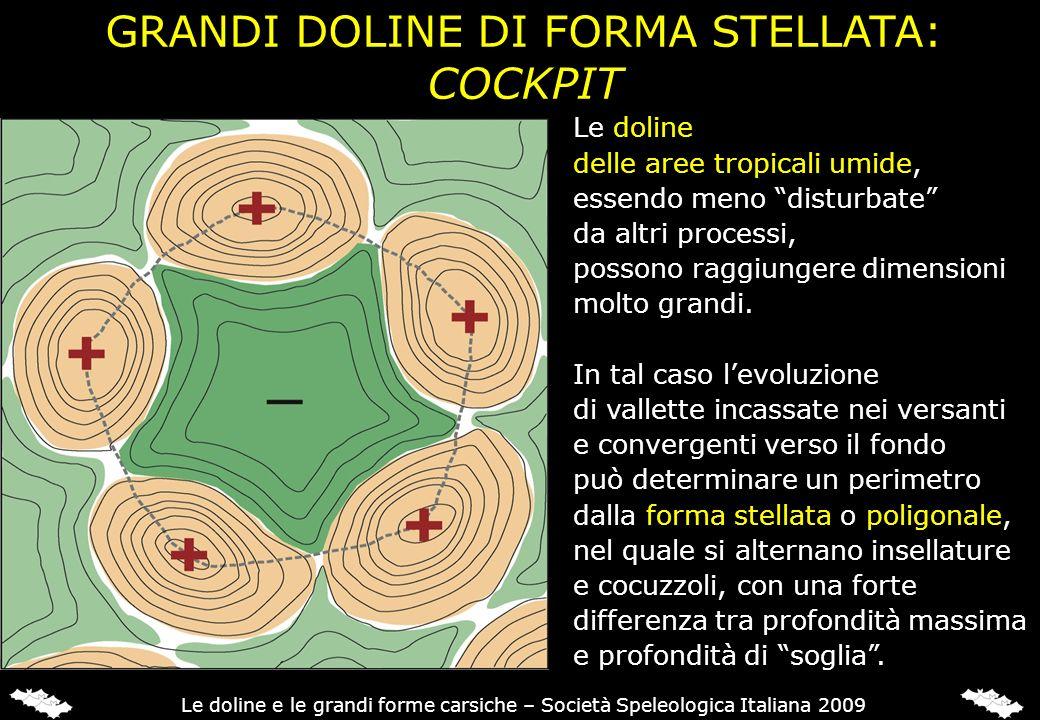 GRANDI DOLINE DI FORMA STELLATA: COCKPIT