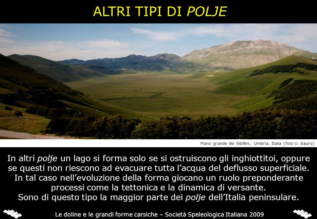 ALTRI TIPI DI POLJE Piano grande dei Sibillini, Umbria, Italia (foto U. Sauro)