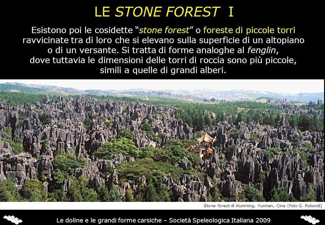 LE STONE FOREST I Esistono poi le cosidette stone forest o foreste di piccole torri.