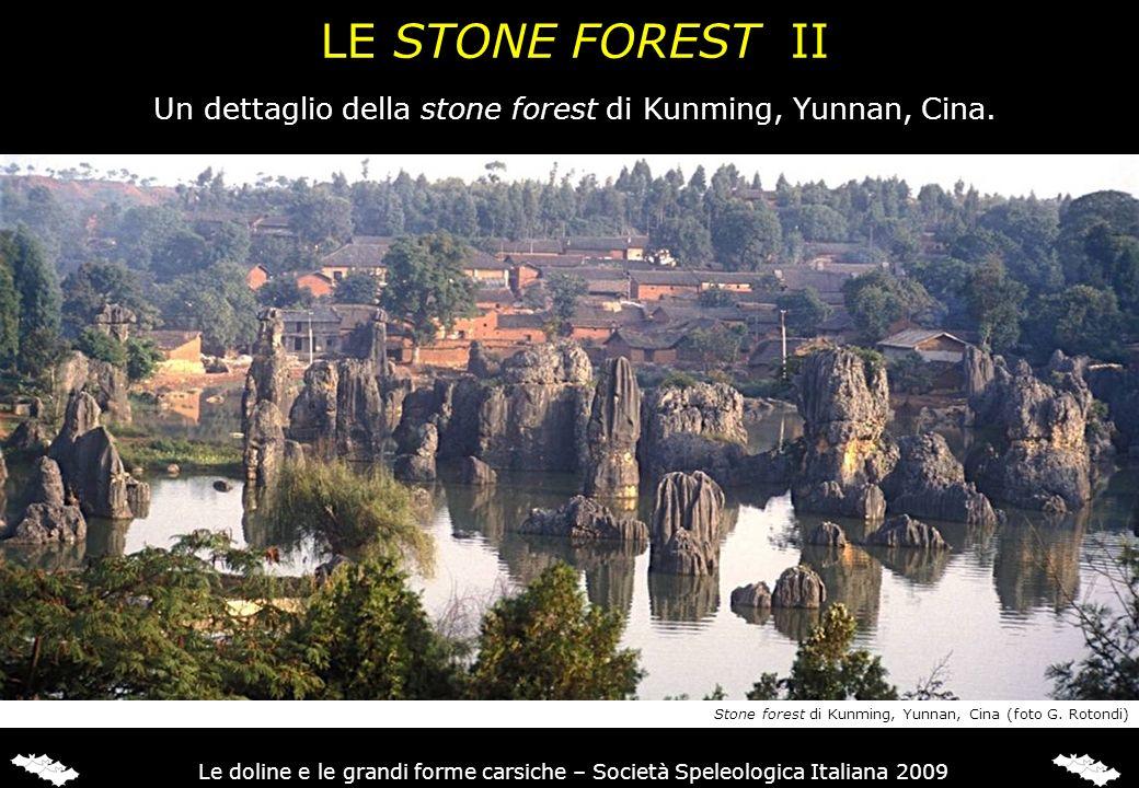 Un dettaglio della stone forest di Kunming, Yunnan, Cina.