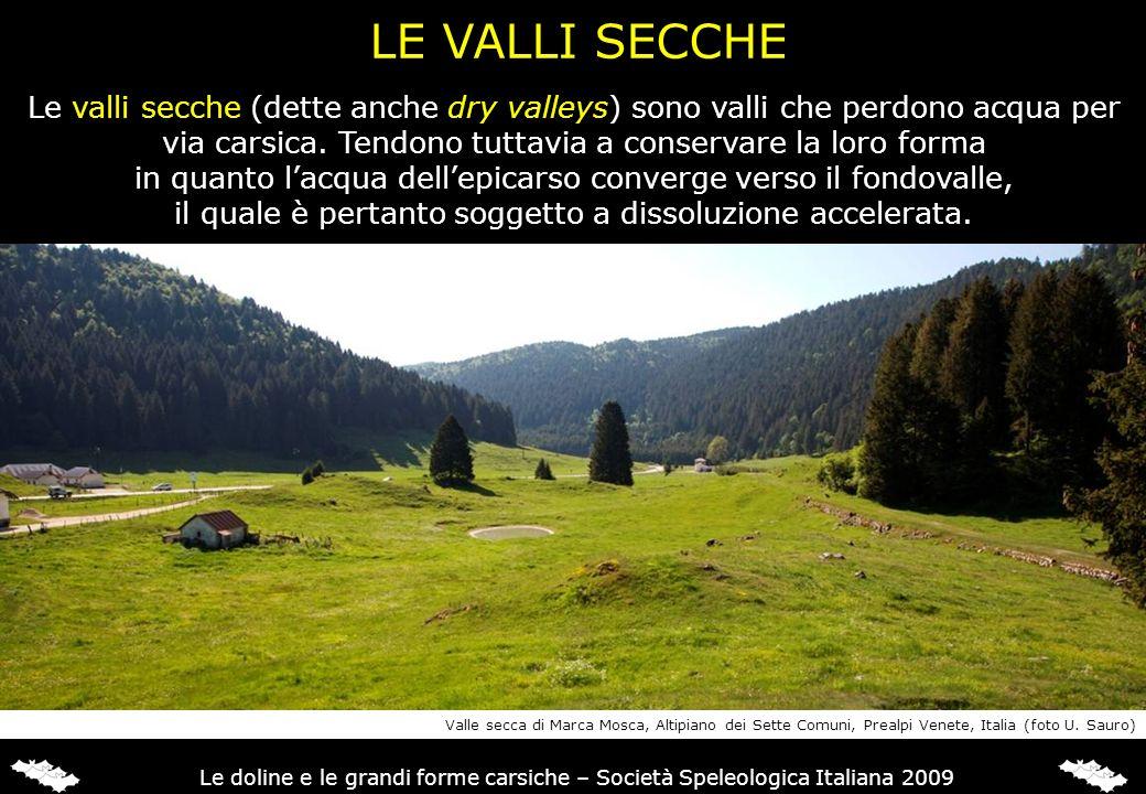 LE VALLI SECCHE Le valli secche (dette anche dry valleys) sono valli che perdono acqua per via carsica. Tendono tuttavia a conservare la loro forma.