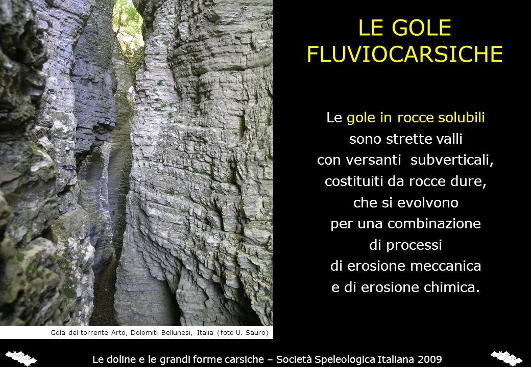 LE GOLE FLUVIOCARSICHE Le gole in rocce solubili sono strette valli