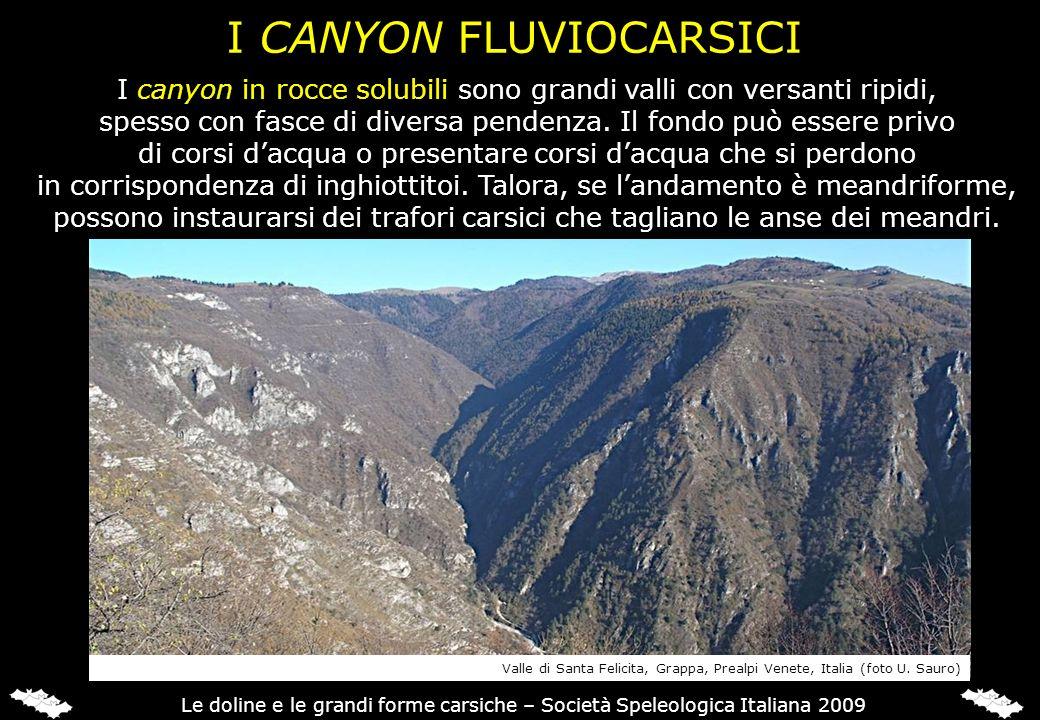 I CANYON FLUVIOCARSICI
