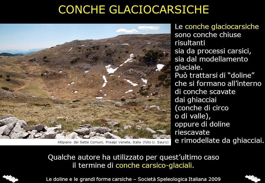 CONCHE GLACIOCARSICHE
