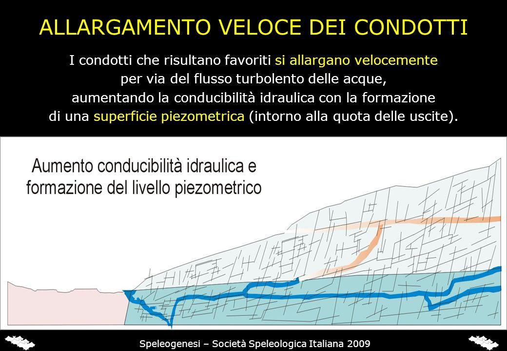 Speleogenesi – Società Speleologica Italiana 2009