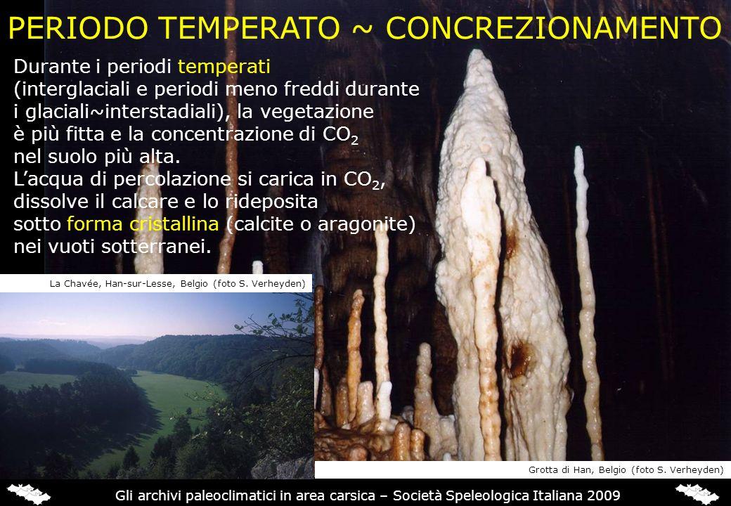 PERIODO TEMPERATO ~ CONCREZIONAMENTO