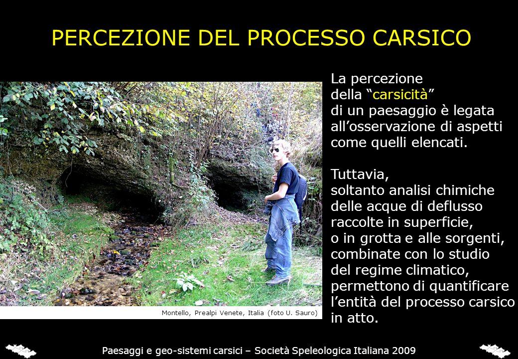 PERCEZIONE DEL PROCESSO CARSICO