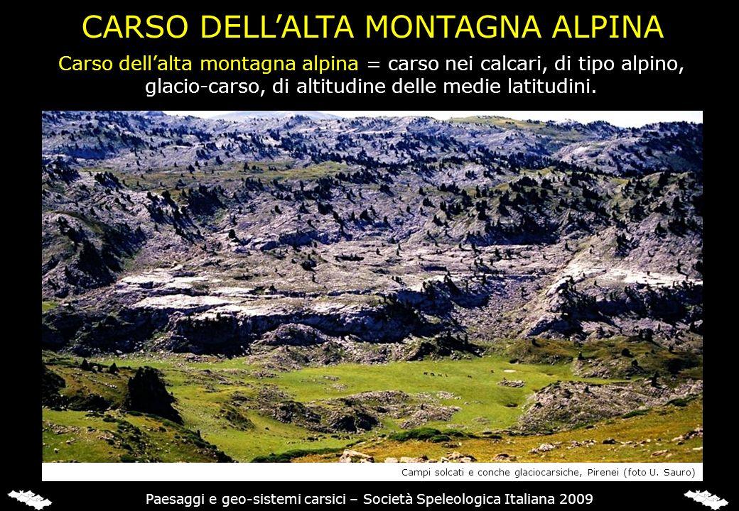 CARSO DELL'ALTA MONTAGNA ALPINA
