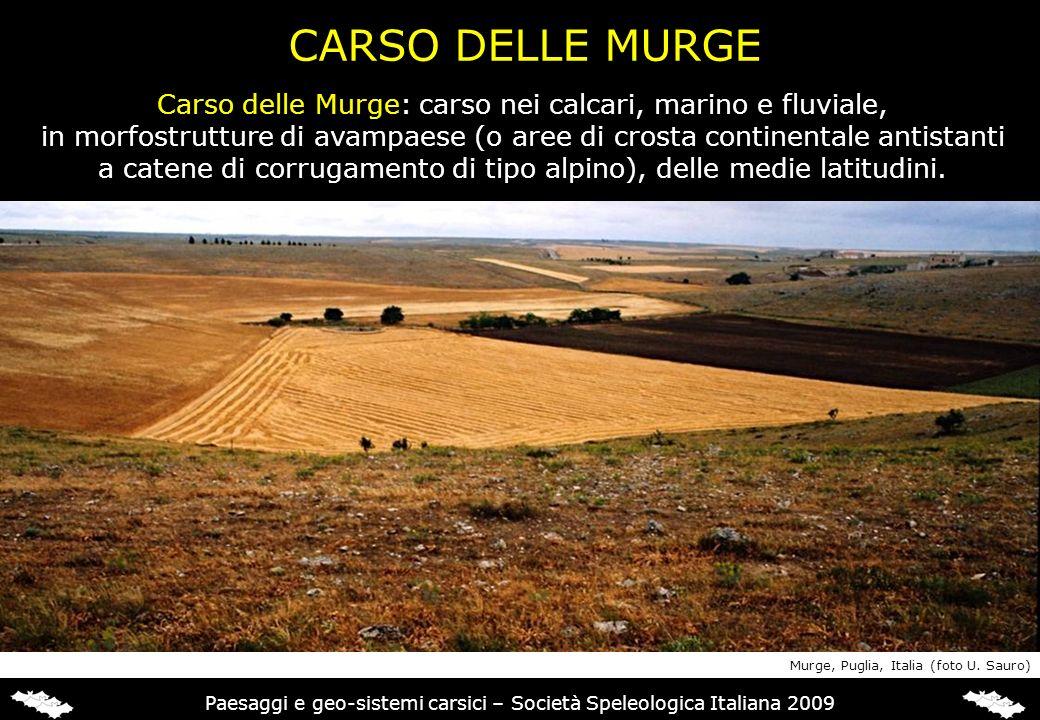 CARSO DELLE MURGE Carso delle Murge: carso nei calcari, marino e fluviale, in morfostrutture di avampaese (o aree di crosta continentale antistanti.
