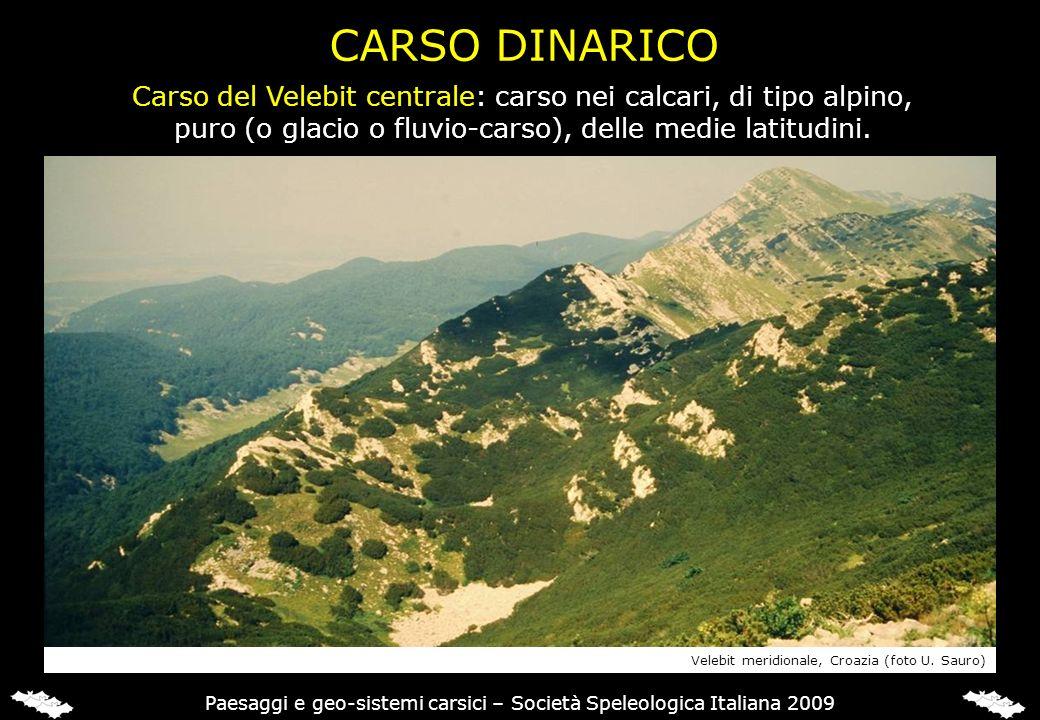 CARSO DINARICO Carso del Velebit centrale: carso nei calcari, di tipo alpino, puro (o glacio o fluvio-carso), delle medie latitudini.