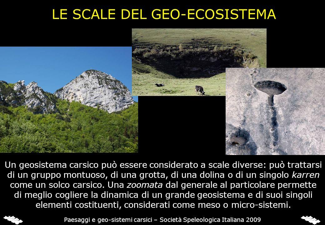 LE SCALE DEL GEO-ECOSISTEMA